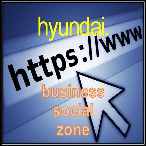 TLD (Top Level Domains) - hyundai