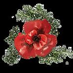 Poppy Rosemary Logo.png