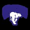 l38511-polar-logo-23529.png