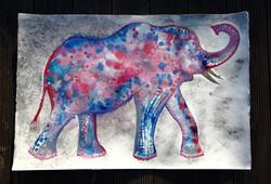 Elephant Amy Hooton