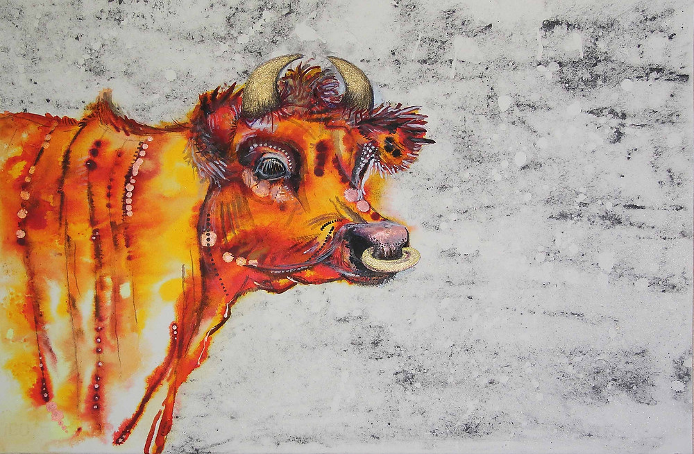 Jersey cow 2 by Amy Hooton