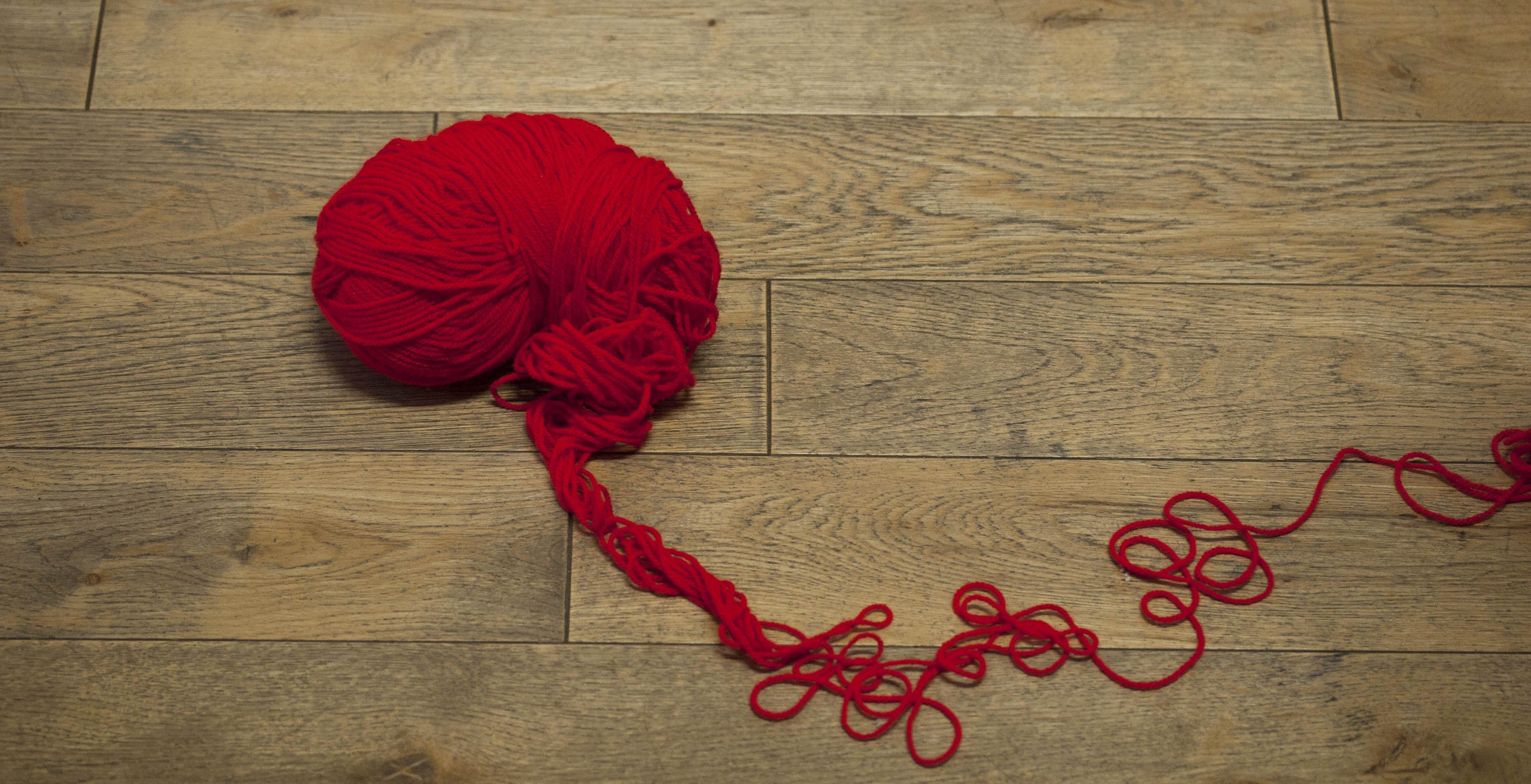 IJS Wool Brain 2013