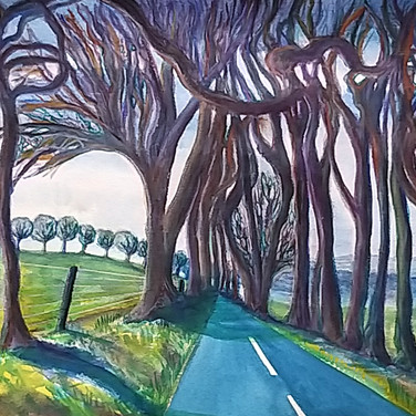 Tunnel of trees on the road to Bathgate