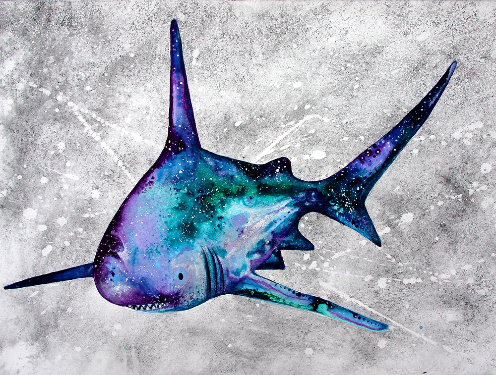 Galactic Shark by Amy Hooton