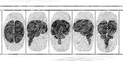 Fingerprint Strip - IJS 2014