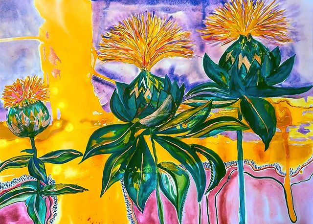 Safflowers _Work in progress this Friday