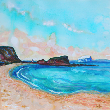 Seacliff by Amy Hooton