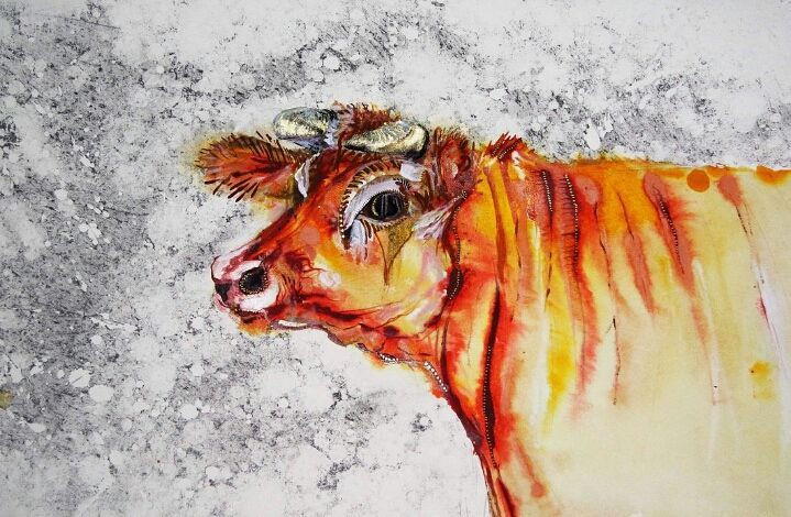 Jersey Cow by Amy Hooton