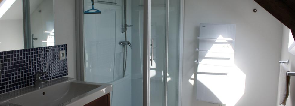 Blue Bedroom Ensuite shower room