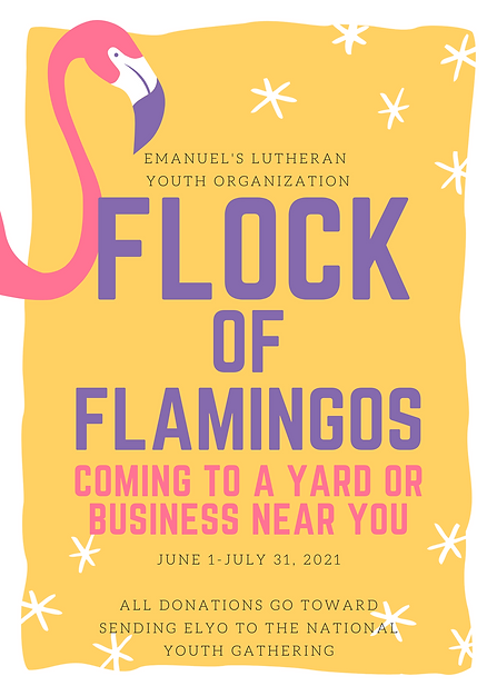 Vibrant Flamingo Concert Flyer - Marcus