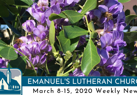 March 8-15, 2020 Weekly News