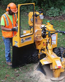 stump grinding image.jpg