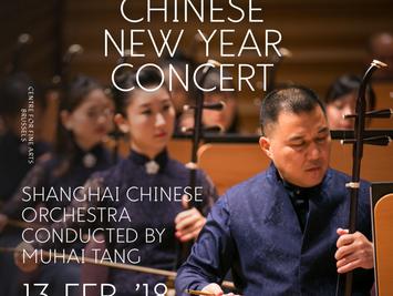 2018中国春节民族新年音乐会比利时贺新春