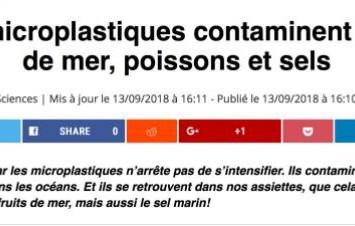 恐怖!根特大学: 每粒青口和牡蛎中都含塑料微粒!塑料已进入人体组织和血液