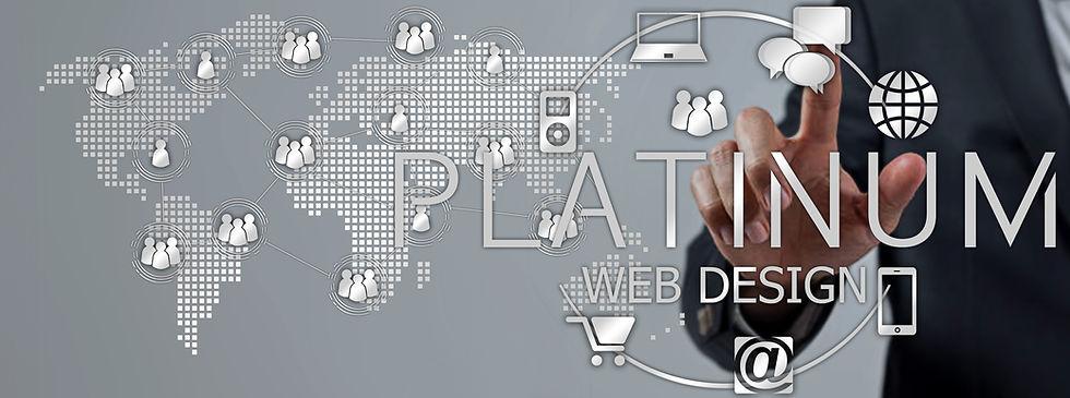 PLATINUM WEB DESIGN VISUAL 1.jpg
