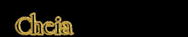 Logo Anim 1 black.png