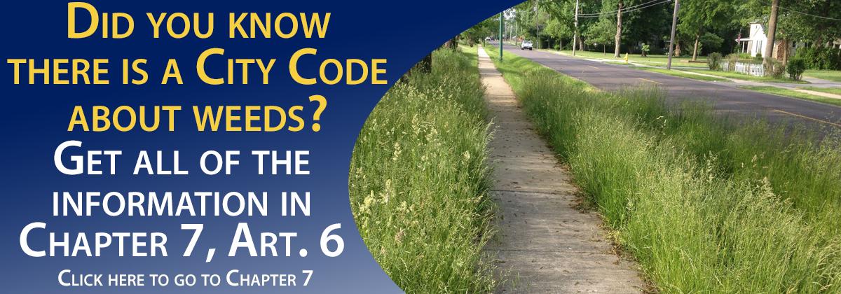 Code_Weeds