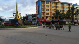 Traffic was manageable in Yunnan