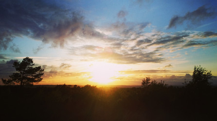Sunset over Ashdown Forest, Sussex
