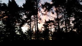 Sunset in Surrey