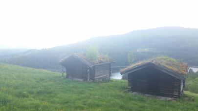 Traditional Norwegian roofing