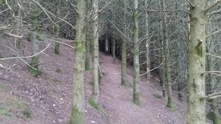 'Shortcut', Lake District