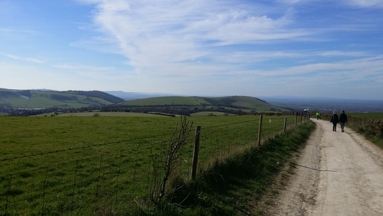 South Downs Way near Ditchling Beacon