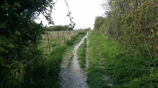 South Downs Way