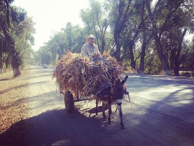 Morning traffic in Kazakhstan