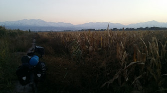 Camping in a cornfield, Kyrgyzstan