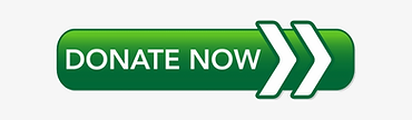 360-3604815_donate-now-button-green.png