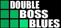 Duo de Blues do Brasil em São Paulo - SP