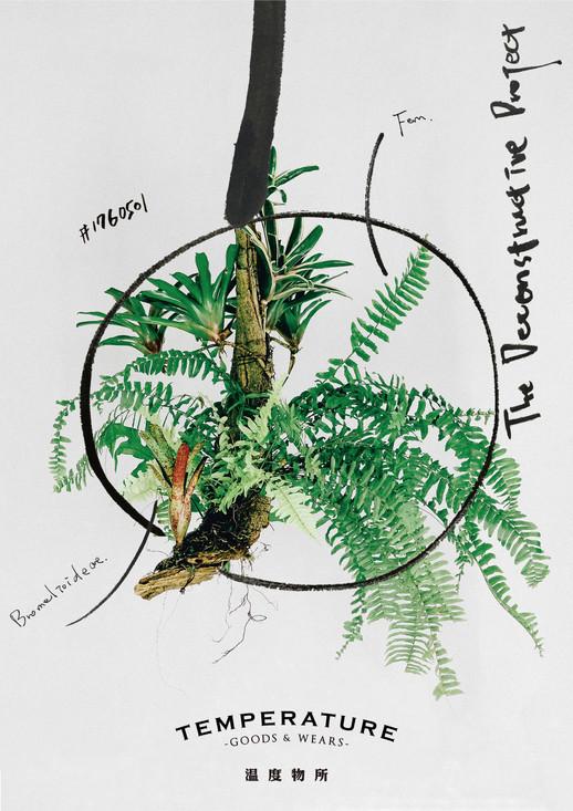 溫度物所植物海報印刷.jpg