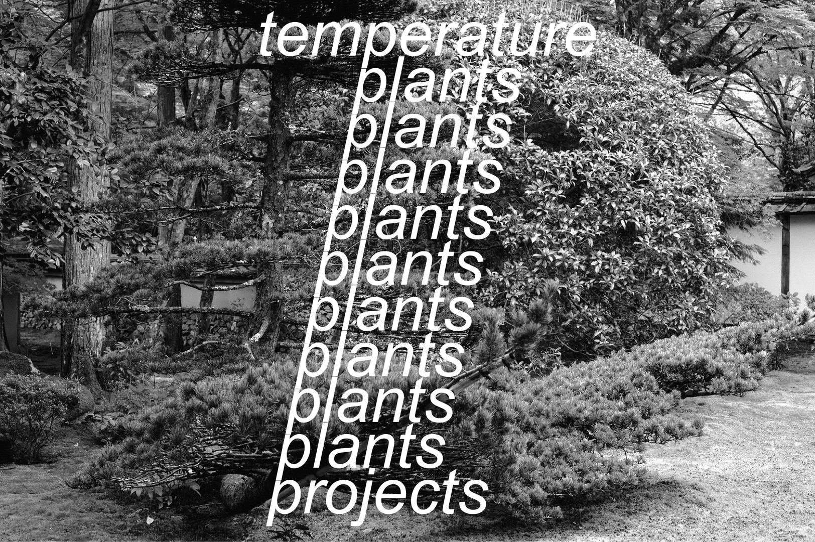 temperature plants projects