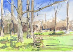 Sketch in Kew Gardens