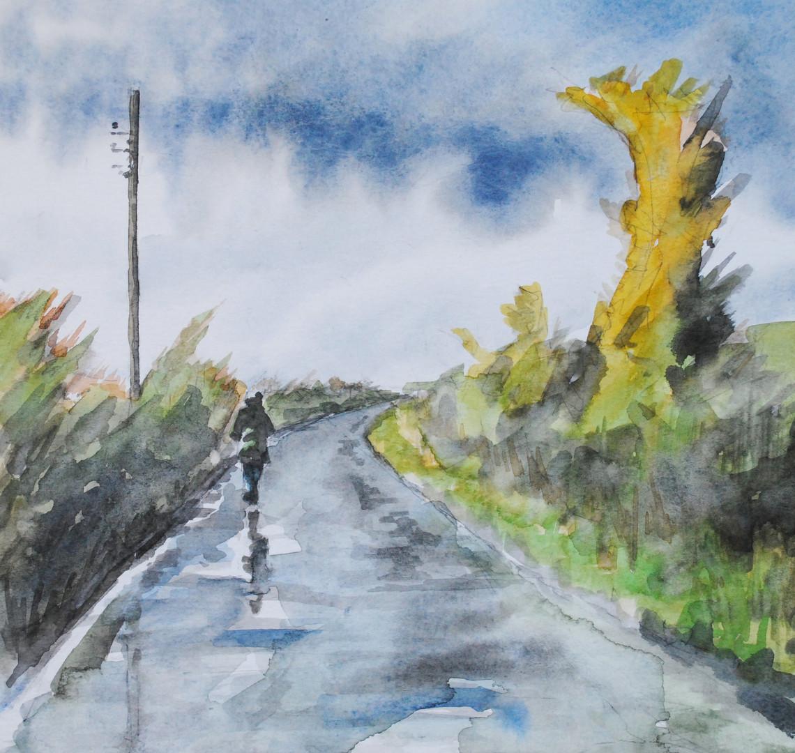 Walks with Brigitte - in rain