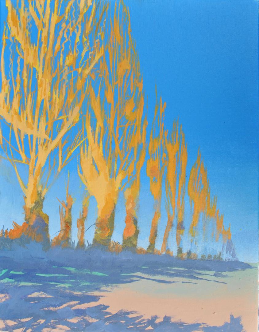 Poplars Thames