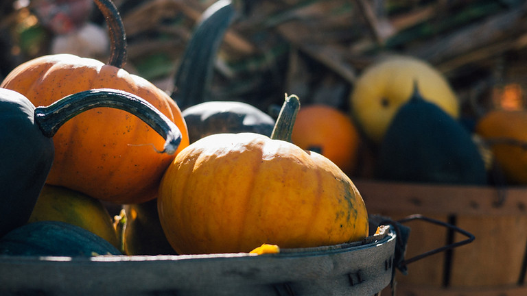 PumpkinTastic