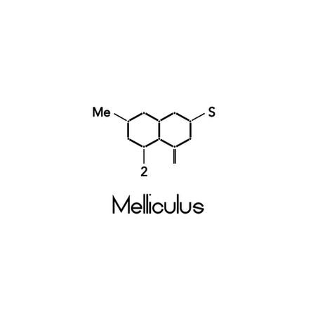 Melliculus logo