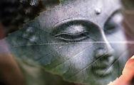 psicologa eva yera psicología budista.jp