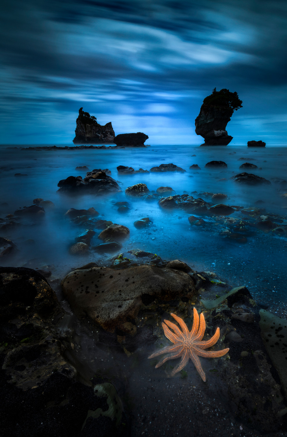 West Coast NZ Photo Tours & Workshops