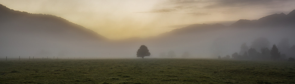 Lone Tree New Zealand Photo Workshops &