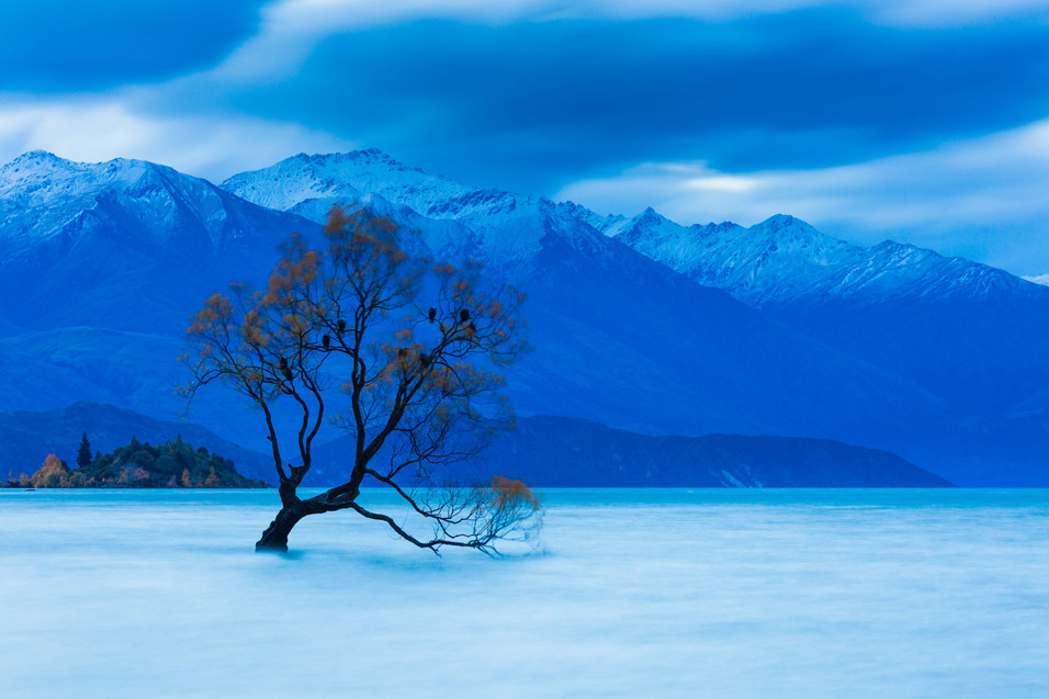 Lake Wanaka Lone Tree Photography Tours