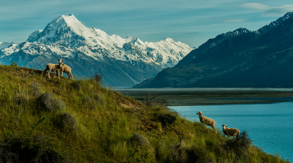 Mount Cook photo worksops & Tours NZ
