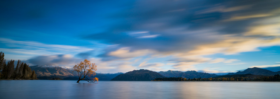 Lone Tree Lake Wanaka Photo Tours