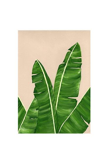 Banana Leaf Card