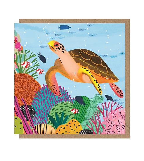 Colourful Turtle Card