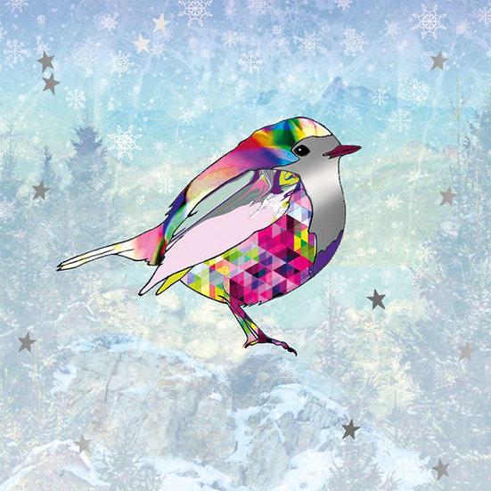 Colourful Robin Christmas Card Pack