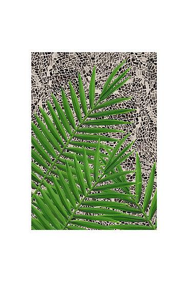 Barbican Palms Card