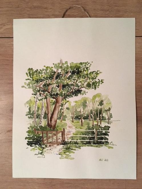Akvarel - træ ved hegnet